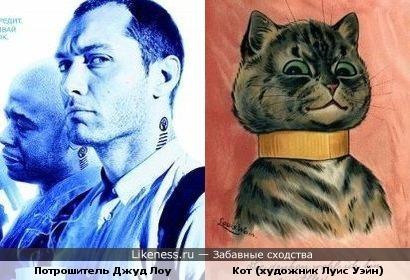 Джуд Лоу похож на кота