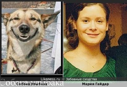 Мария Гайдар похожа на Собаку Улыбаку