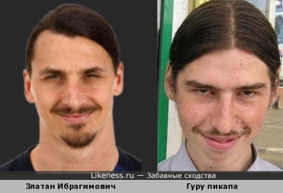 Златан Ибрагимович похож на Гуру пикапа