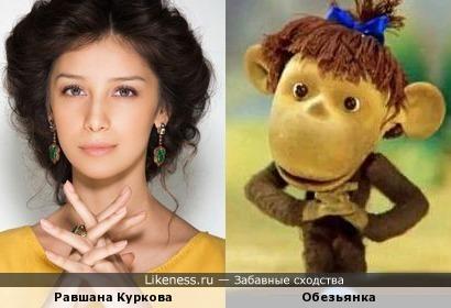 """Равшана Куркова похожа на обезьянку из мультика """"38 попугаев"""""""