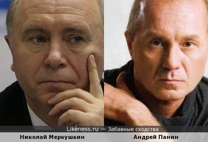 Губернатор Самарской области похож на актёра Панина