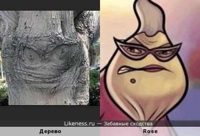 Изображение на дереве напомнило Rose