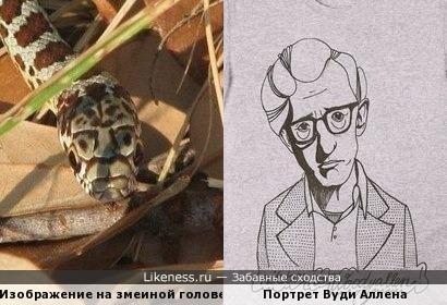 Природный рисунок на голове змеи и портрет Вуди Аллена на футболке