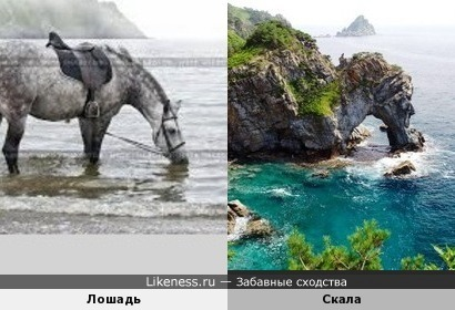 Скала похожа на утоляющую жажду лошадь