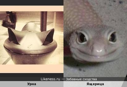 Урна напоминает улыбающуюся ящерицу