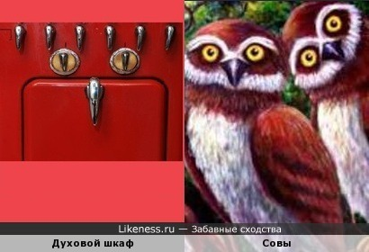 Фрагмент духового шкафа похож на сову