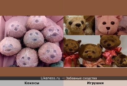 Кокосы похожи на рожицы игрушек-зверушек