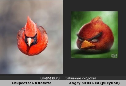 Аngry birds Red существует)