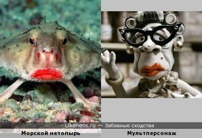 Рыбка с такими алыми губками похожа на женщину