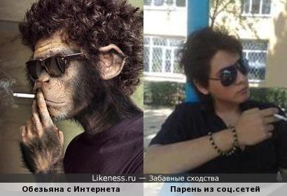 Парень похож на обезьяну