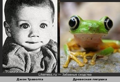 Младенец Джон Траволта похож на лягушонка