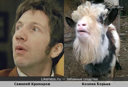 Мой козлик, в деревне, похож на Савелия Крамарова