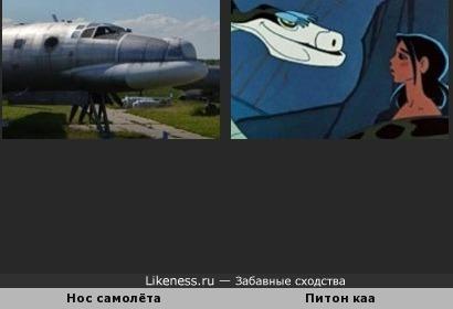 Нос самолёта похож питона каа