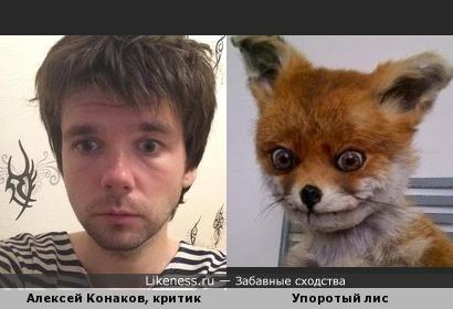 Алексей Конаков на упоротого лиса