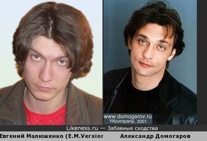 Евгений Малюженко похож на Александра Домогарова