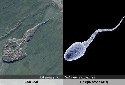 Каньон в России (Якутия) похожа на сперматозоида.