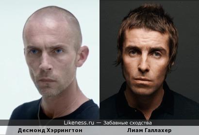 """Десмонд Хэррингтон в """"Неоновом демоне"""