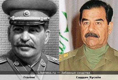 Саддам Хусейн похож на Сталину