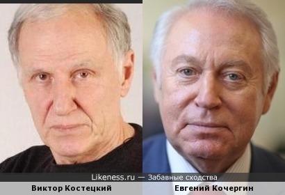 Виктор Костецкий и Евгений Кочергин похожи
