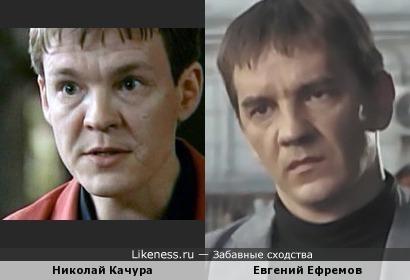 Евгений Ефремов и Николай Качура похожи!