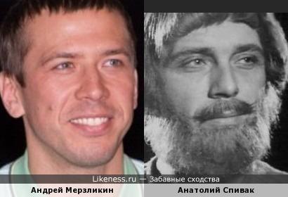 Андрей Мерзликин похож на Анатолия Спивака