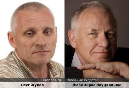 Актёры похожи.