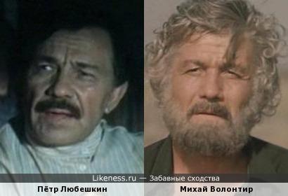 Михай Волонтир и Пётр Любешкин