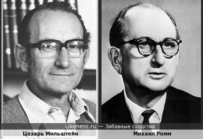 "Цезарь Мильштейн и Михаил Ромм(""Наука"