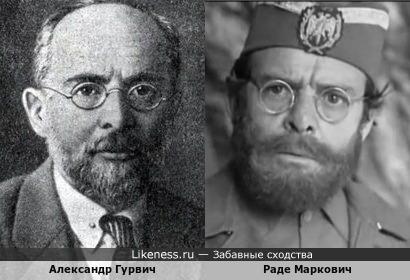 "Александр Гурвич и Раде Маркович(""Наука"")"
