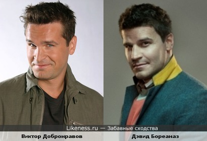 Виктор Добронравов похож на Дэвида Бореаназа