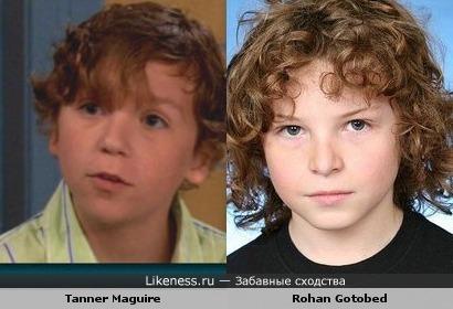 Tanner Maguire похож на Rohan Gotobed