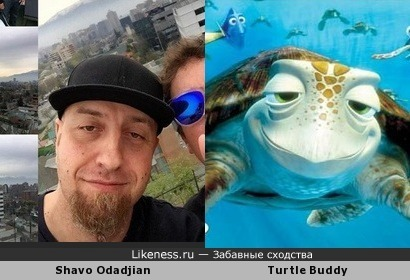 Shavo (System Of A Down) & Turtle (Finding Nemo)