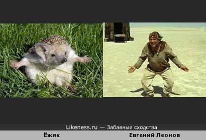 Ёжик похож на Евгения Леонова