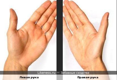 Левая рука похожа на правую