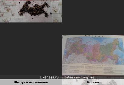 Шелуха от семечек похожа на Россию