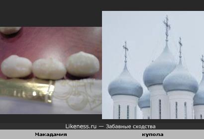 Орех макадамия напоминает купола