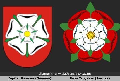 Эмблемы Английской династии и польской гмины