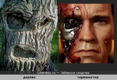 Забавненько).Дерево напомнило мне Терминатроа D/