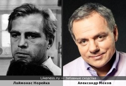 Лаймонас Норейка и Александр Мохов похожи