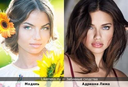 Румынская модель похожа на лиму