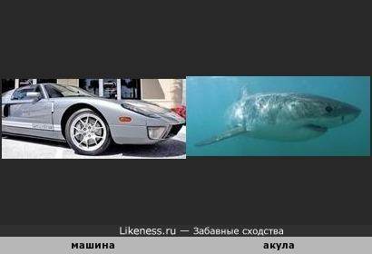 машина похожа на акулу