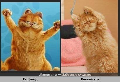 Просто хороши!)))