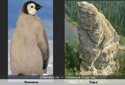 Гора похожа на пингвиненка