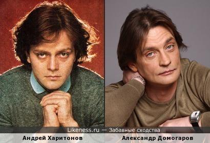 Андрей Харитонов и Александр Домогаров похожи