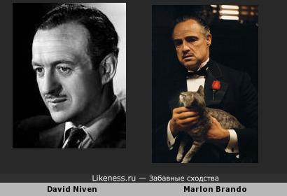 David Niven напоминает Marlona Brando