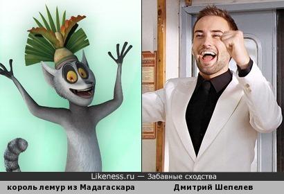 король лемур из Мадагаскара и Дмитрий Шепелев