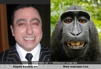 Карен Аванесян похож на гориллу. :-)