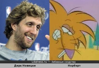 Игрок НБА Дирк Новицки напоминает бобра Норберта