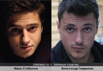 Гаврилюк похож на Стебунова