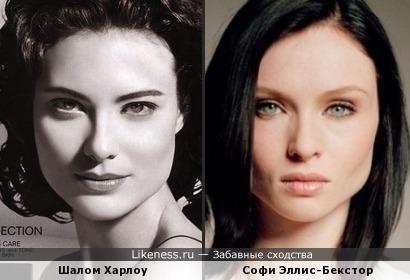Шалом Харлоу и Софи Эллис-Бекстор